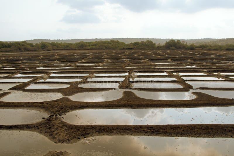 construction des gisements de riz avec de l'engrais chimique image libre de droits
