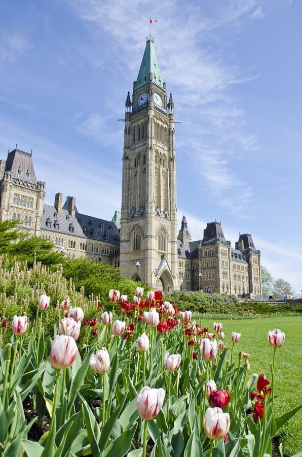 Construction Ottawa du Parlement et tulipes #3 photos libres de droits