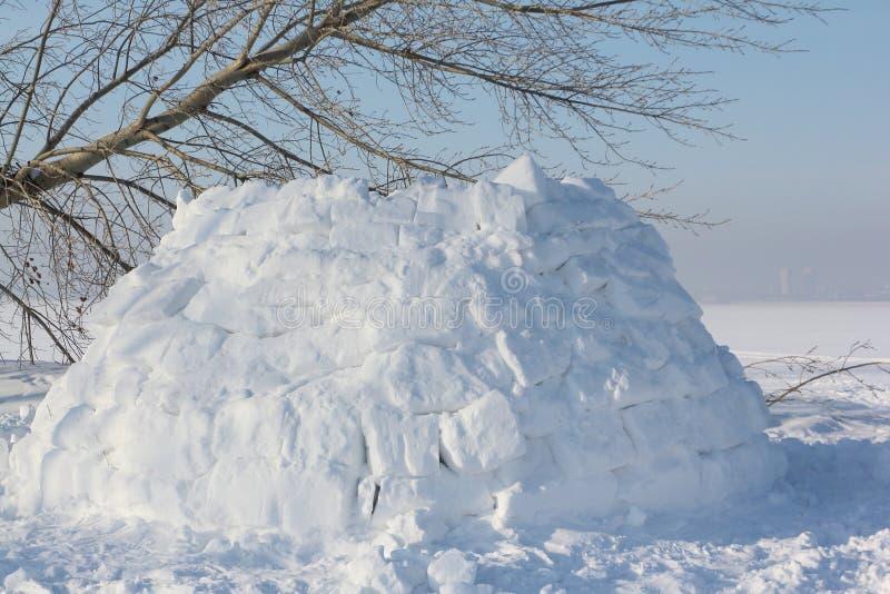 Construction un igloo sur une clairière de neige pendant l'hiver image stock