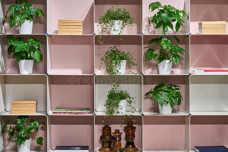 Construction of white metallic square shelves with objects royalty free stock photos