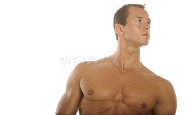 Construtor de corpo imagens de stock