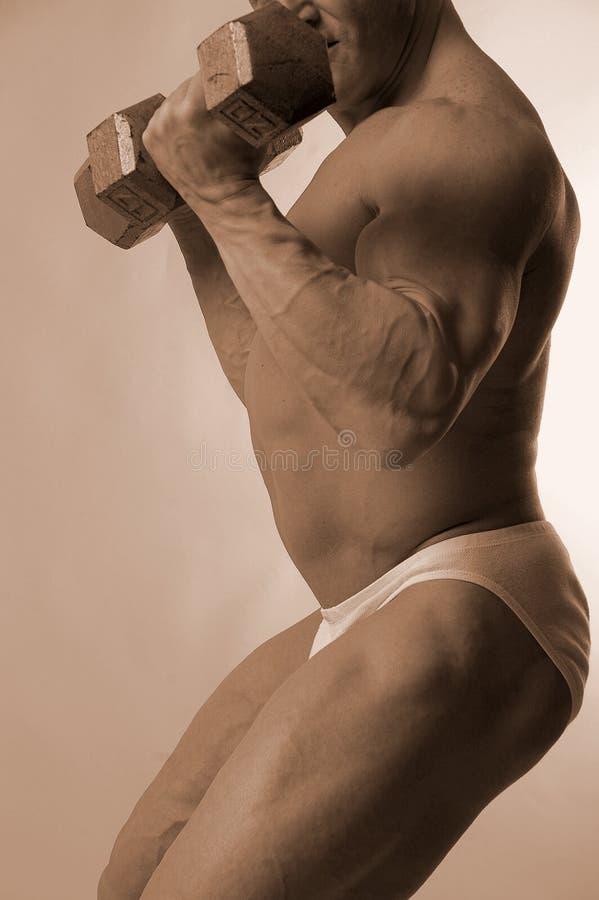 Construtor de corpo com pesos imagem de stock