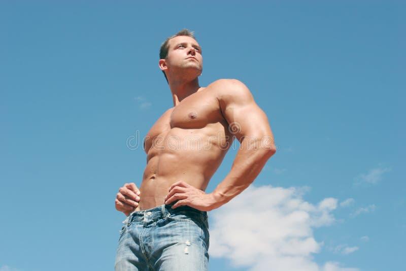 Construtor de corpo 'sexy' imagens de stock