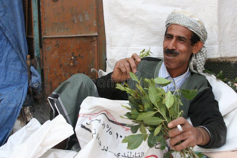 Consumición de Qat en Yemen fotografía de archivo