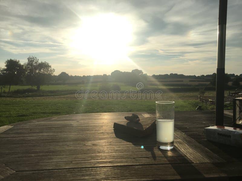 Consumición en el sol de la tarde imagen de archivo libre de regalías