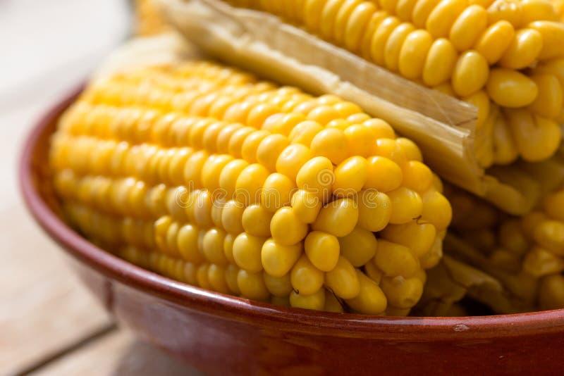 Consumición sana, comida sana, maíz dulce orgánico cocinado - maíz cocinado hecho en casa fotografía de archivo