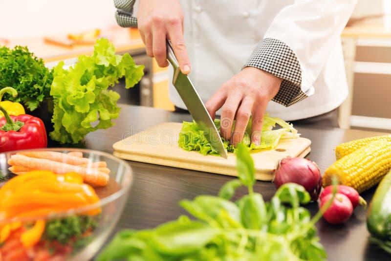 Consumición sana - lechuga del corte del cocinero en cocina fotografía de archivo libre de regalías