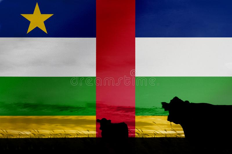 Consumption and production of cattle in countries with the flag of Central African Republic.  stock photos