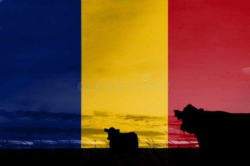 Consumption and production of cattle in countries with the flag of Chad.  stock image