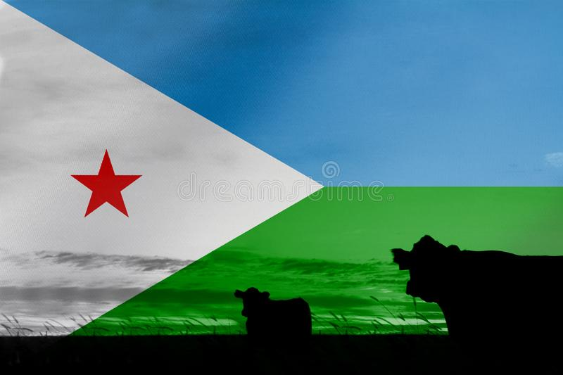 Consumption and production of cattle in countries with the flag of Djibouti.  stock images