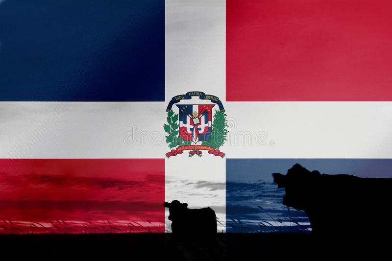 Consumption and production of cattle in countries with the flag of Dominican Republic.  stock photography