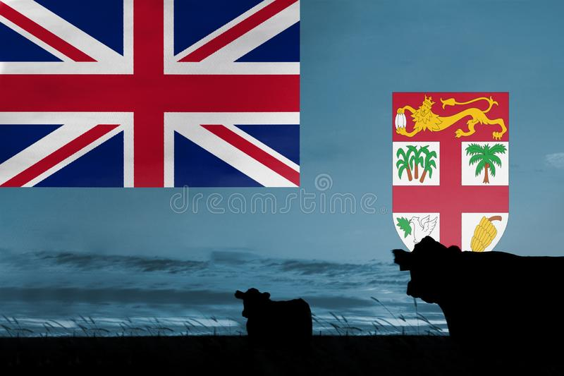 Consumption and production of cattle in countries with the flag of Fiji.  vector illustration