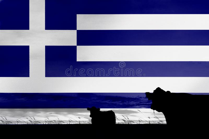 Consumption and production of cattle in countries with the flag of Greece.  royalty free stock photo
