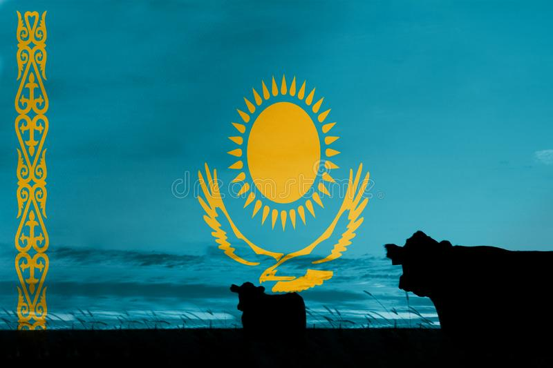 Consumption and production of cattle in countries with the flag of Kazakhstan.  royalty free stock image