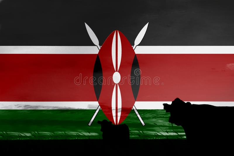 Consumption and production of cattle in countries with the flag of Kenya.  royalty free illustration