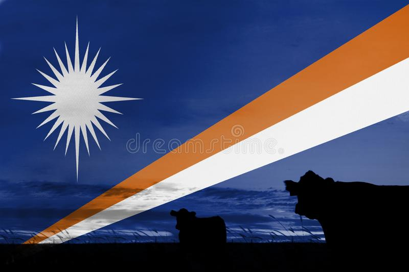 Consumption and production of cattle in countries with the flag of Marshall Islands stock image