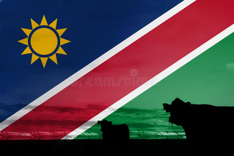 Consumption and production of cattle in countries with the flag of Namibia.  royalty free stock photography