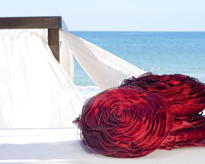 Contact de luxe dans la plage photographie stock