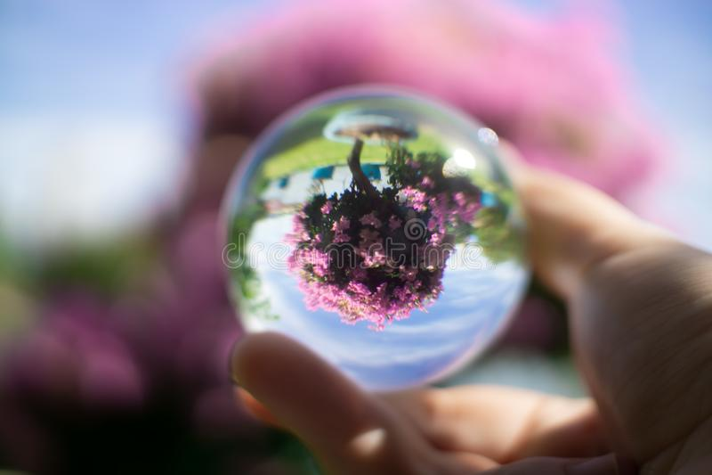 Contact het jongleren met Hand en acrylbal royalty-vrije stock afbeeldingen