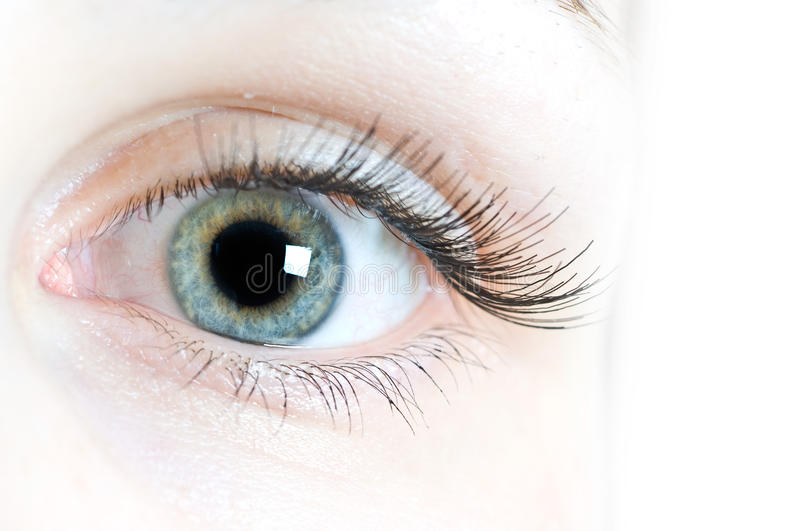 Contact lenses for eyes stock image