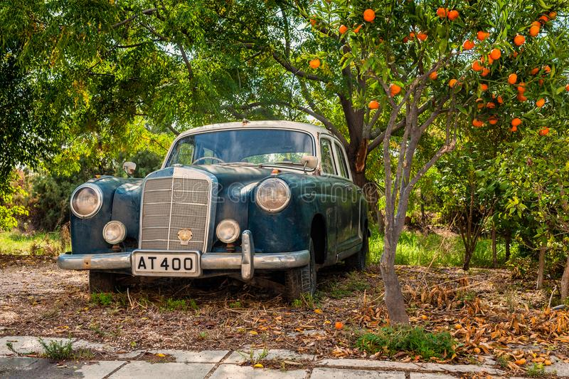 Contador de tiempo viejo de Mercedes-Benz W180 por debajo árbol anaranjado en Larnaca Chipre imagen de archivo libre de regalías
