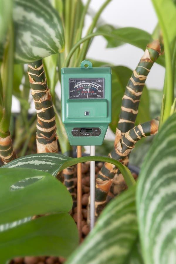 Contador del agua, medidor de pH para el suelo de las plantas de la casa imágenes de archivo libres de regalías