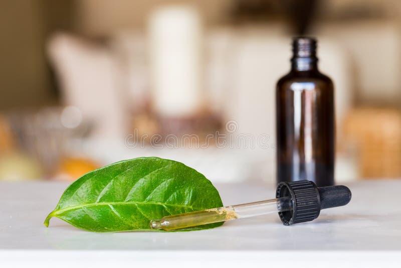 Contagoccia con liquido con una bottiglia e una foglia verde fotografia stock libera da diritti