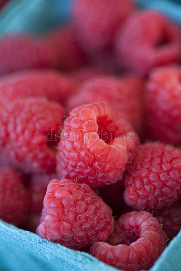 Container of Raspberries royalty free stock image