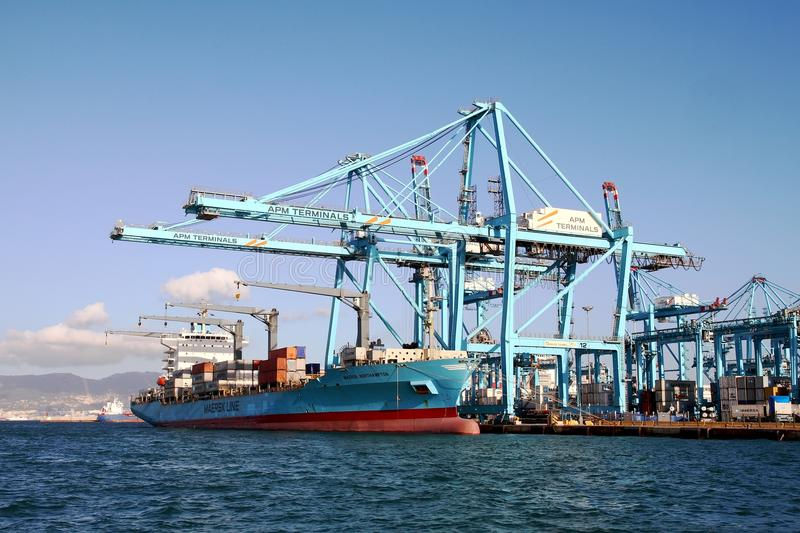 Container ship Maersk Northampton working with containers cranes. royalty free stock image