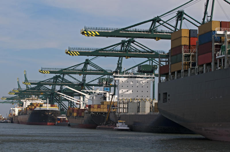 Download Container ships stock photo. Image of export, harbor - 16530108
