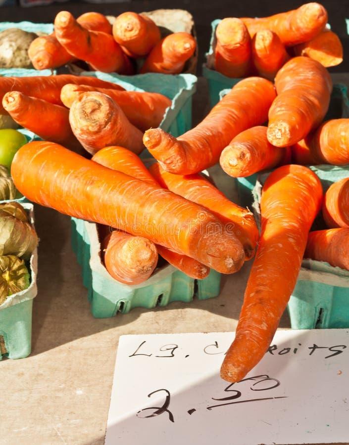 Containers van vers geplukte wortelen stock foto