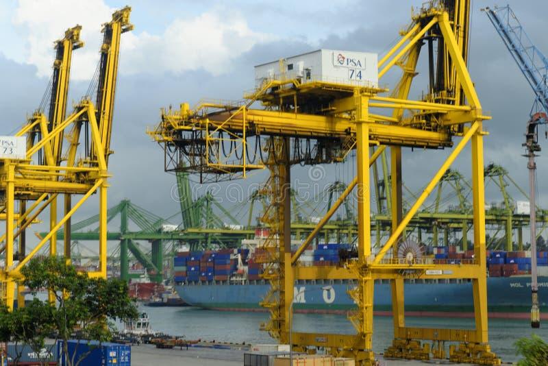 Containerschiffe und Kräne an Singapur-Hafen lizenzfreies stockfoto