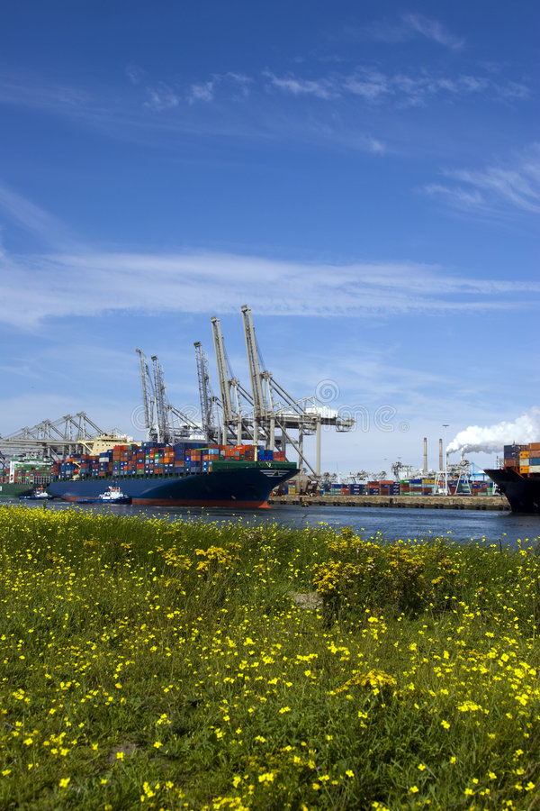 Containership imagem de stock royalty free