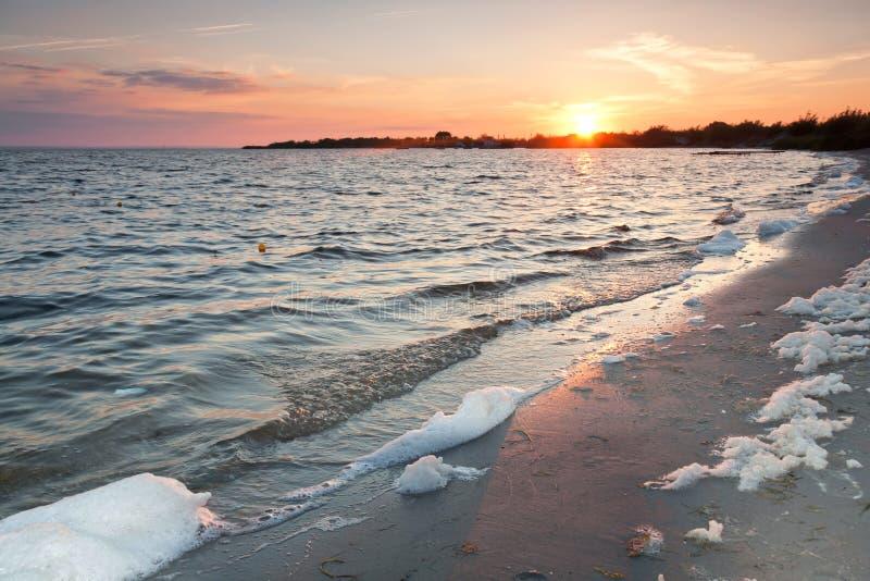 Contaminación en la playa. foto de archivo libre de regalías