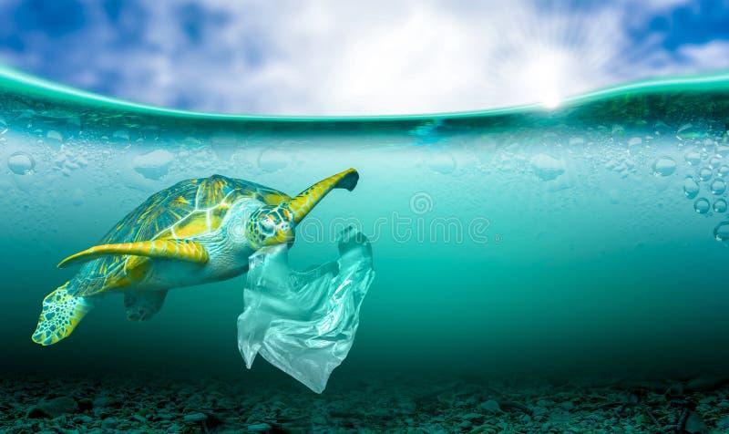 Contaminación plástica en problemas ambientales marinos Los animales en el mar no pueden vivir Y causar contaminación de plástico imagen de archivo libre de regalías