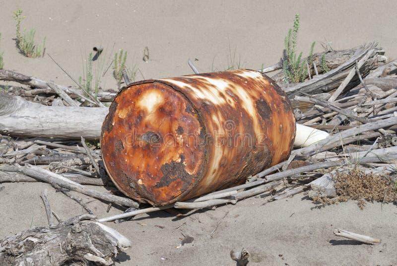 Contaminazione ambientale, spiaggia sabbiosa, Toscana fotografia stock libera da diritti