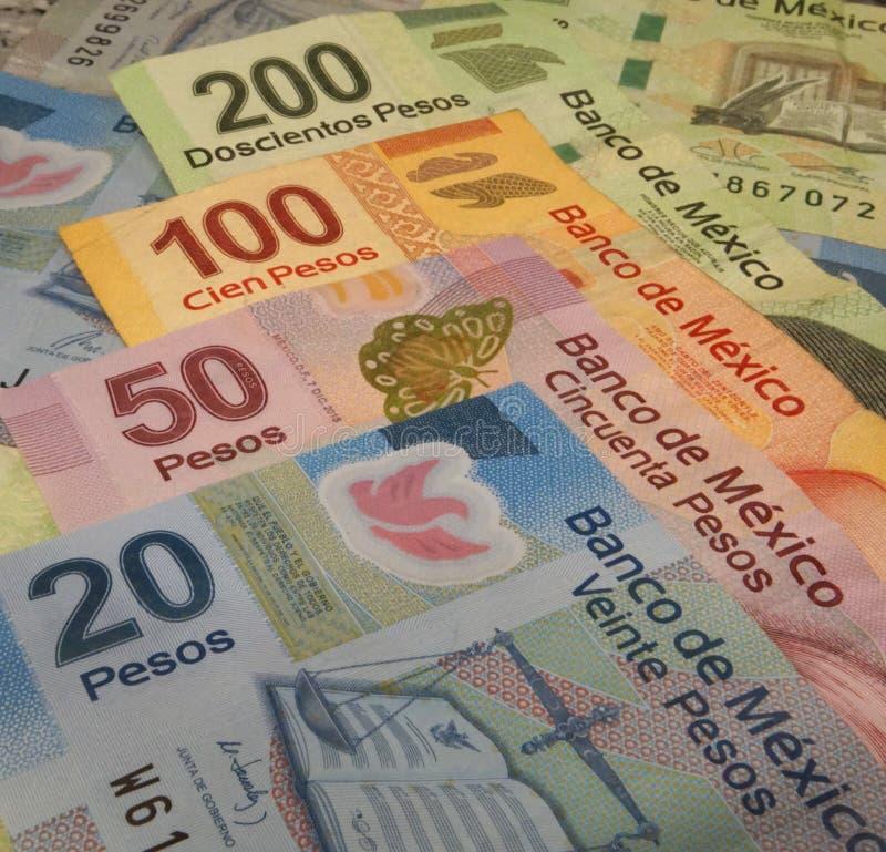 Contas das cédulas da moeda do peso mexicano com 20, 50, 100 e 200 valores do peso fotos de stock royalty free