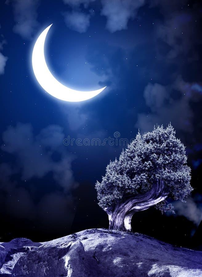 Conte de fées de nuit illustration de vecteur