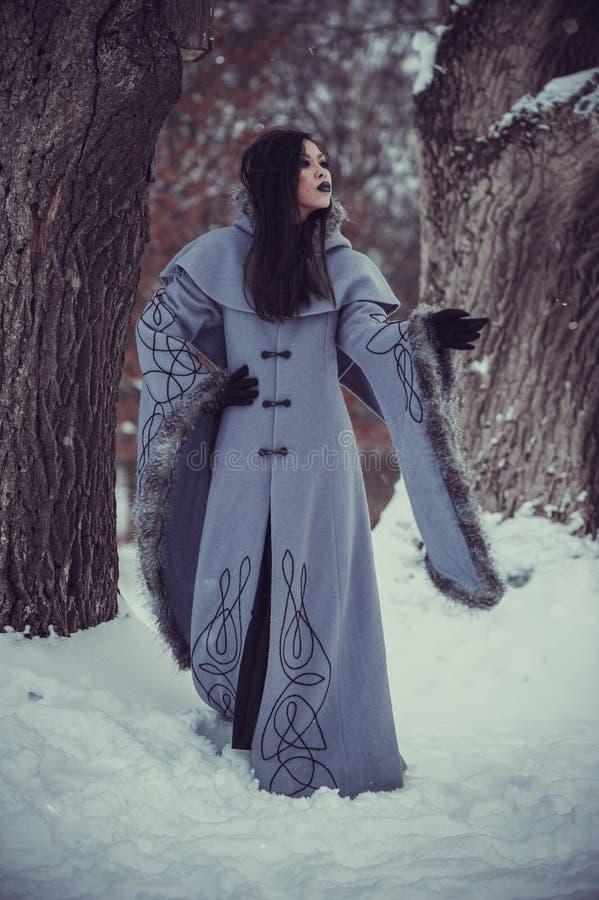 Conte de fées de jeune femme image stock