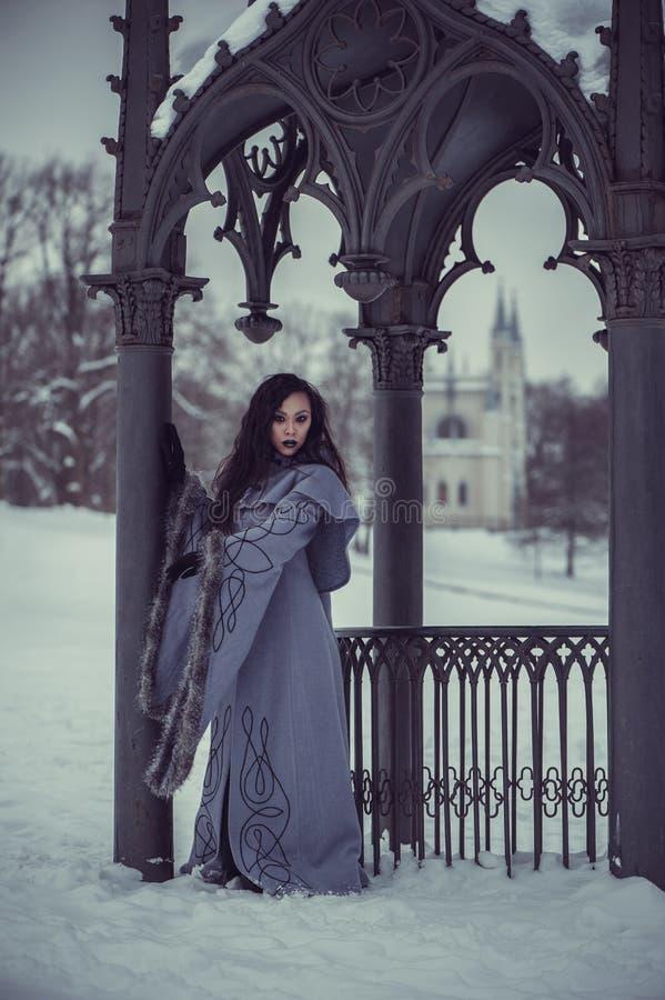 Conte de fées de jeune femme photographie stock