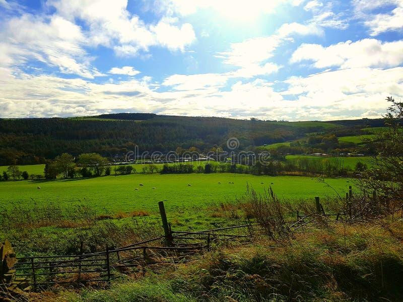 Contea Durham fotografie stock