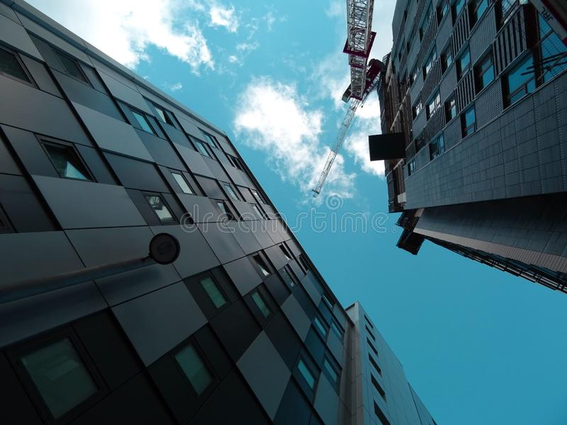 Contemporary Architecture royalty free stock image