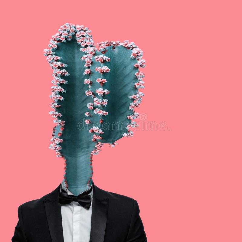 Cactus head with smoking suit stock photography