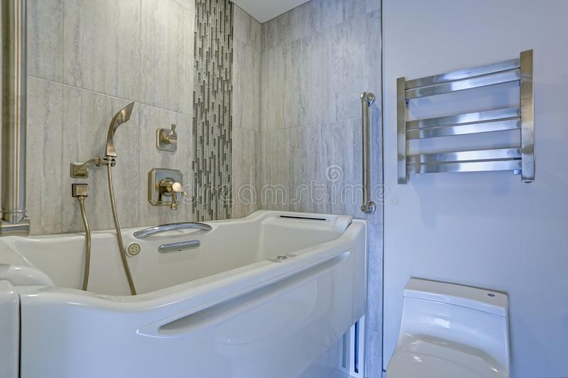 Download Contemporary Bathroom Design With Jacuzzi Walk In Bathtub Stock  Image   Image Of Light