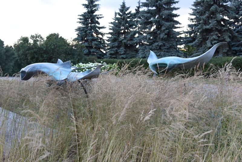 Contemporary garden sculpture of cramp fish in waves of grasses and picea on background royalty free stock photo