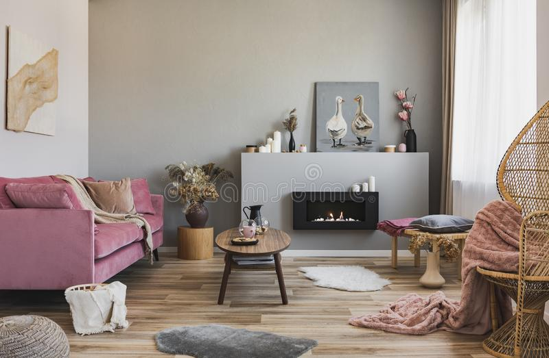 Contemporary living room interior with peacock chair, coffee table, fireplace and pink couch.  stock image