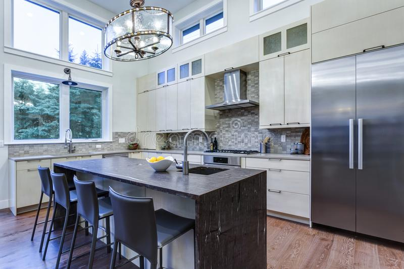 Contemporary white kitchen with high-end kitchen appliances. Contemporary white kitchen with Upscale kitchen appliances, custom built cabinets, kitchen Island royalty free stock photography