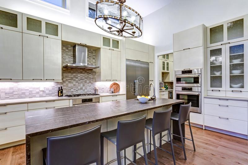 Contemporary white kitchen with high-end kitchen appliances. Contemporary white kitchen with Upscale kitchen appliances, custom built cabinets, kitchen Island royalty free stock images