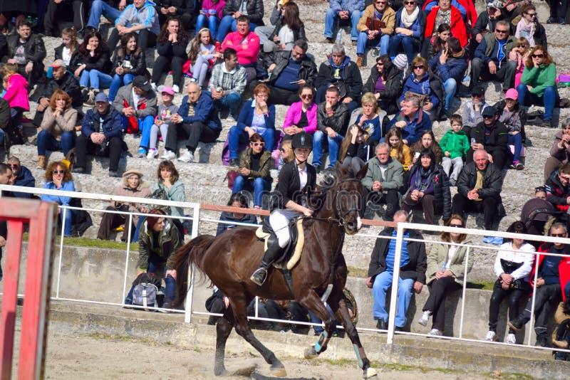 Contendiente Varna Bulgaria de la muchacha de la competencia de la equitación foto de archivo libre de regalías