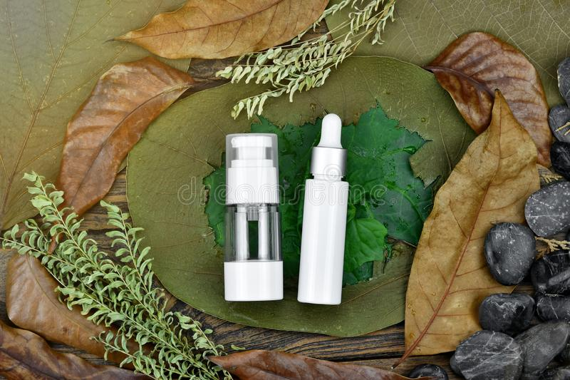Contenitore del pacchetto della bottiglia dei cosmetici su sfondo naturale, cura di pelle sulla foglia verde fotografia stock